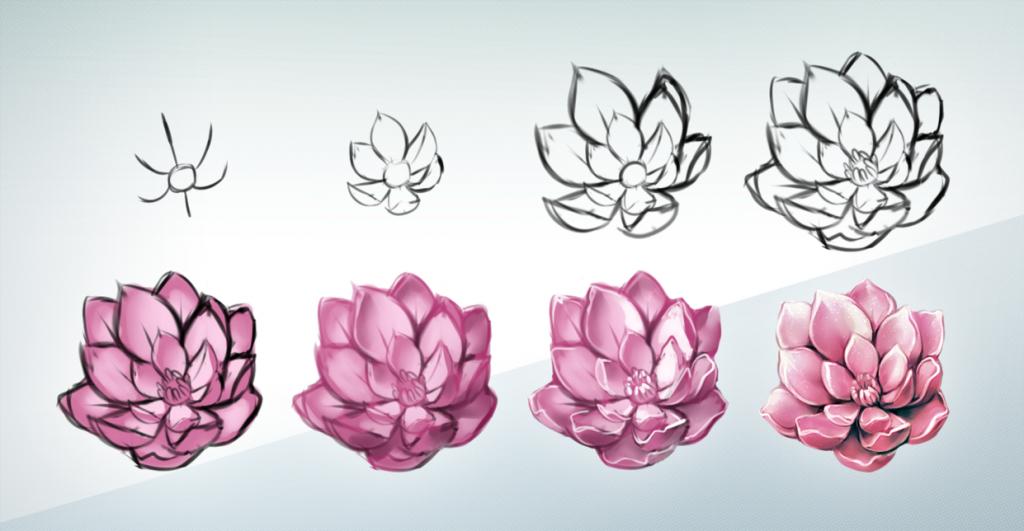 1024x531 flower tutorial drawing