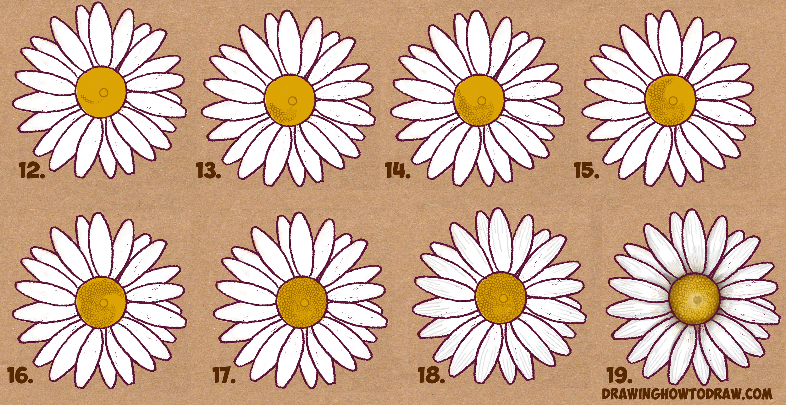 2500x1290 Drawing Of A Daisy How To Draw A Daisy Flower Daisy Flower Easy