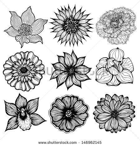 Flower drawing black and white at getdrawings free for 450x470 gallery black and white flower drawings pics mightylinksfo