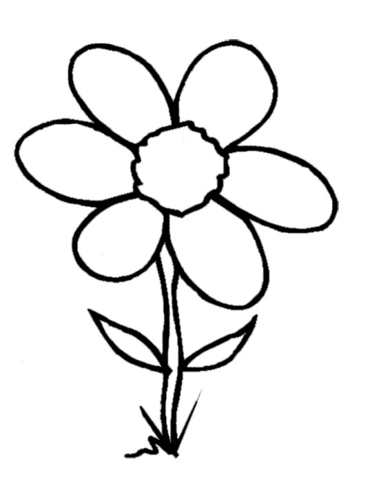 Flower drawing clipart at getdrawings free for personal use black and white flower drawing 540x702 bobook clipart flower mightylinksfo