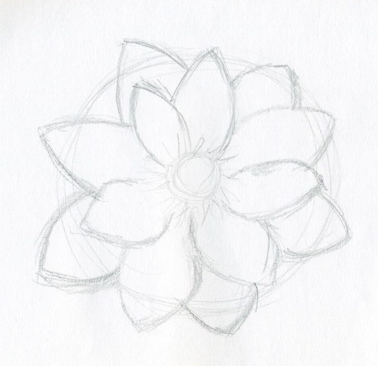Flower Drawing Ideas At Getdrawingscom Free For Personal