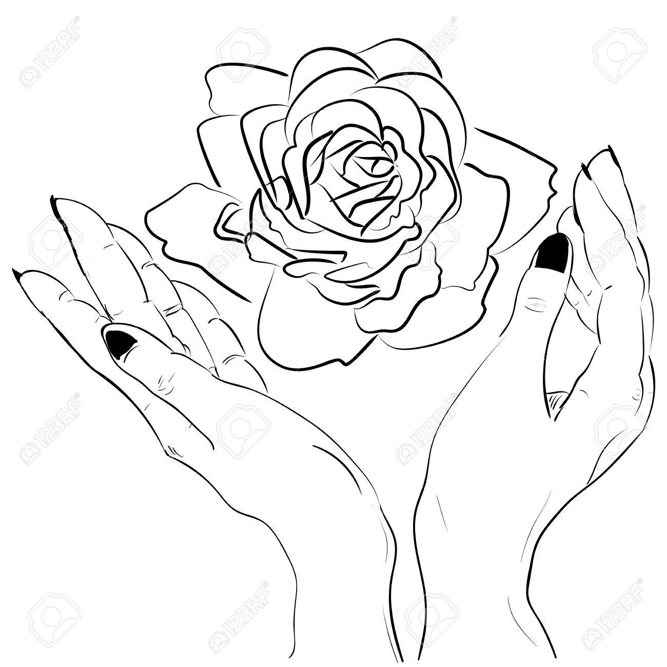 1300x1300 Hands Holding A Rose Flower Isolated Outline Hand Drawn Sketch