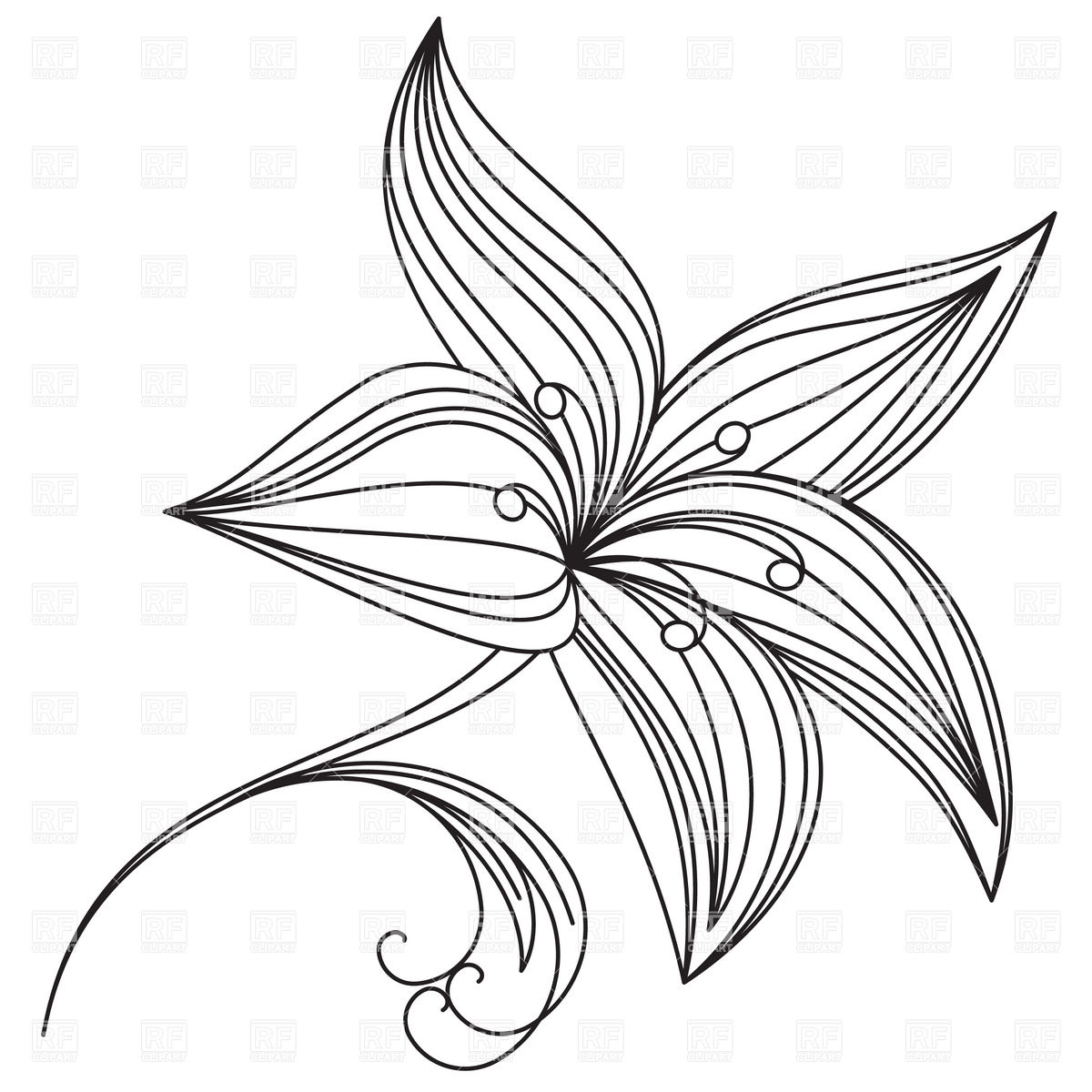 1200x1200 Abstract Beautiful Flower Of Lily Outline Royalty Free Vector Clip