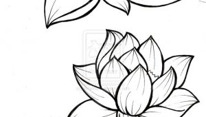 300x170 Drawing Flowers Pictures