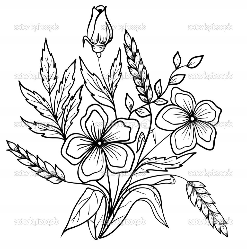 Flower Drawing Outlines At Getdrawings Free For Personal Use