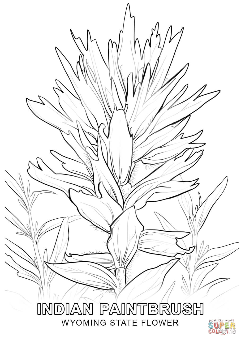 flower drawing pages at getdrawings | free for personal use