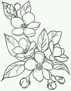 236x303 Tropical Flowers Stained Glass Coloring Book Hand Drawn
