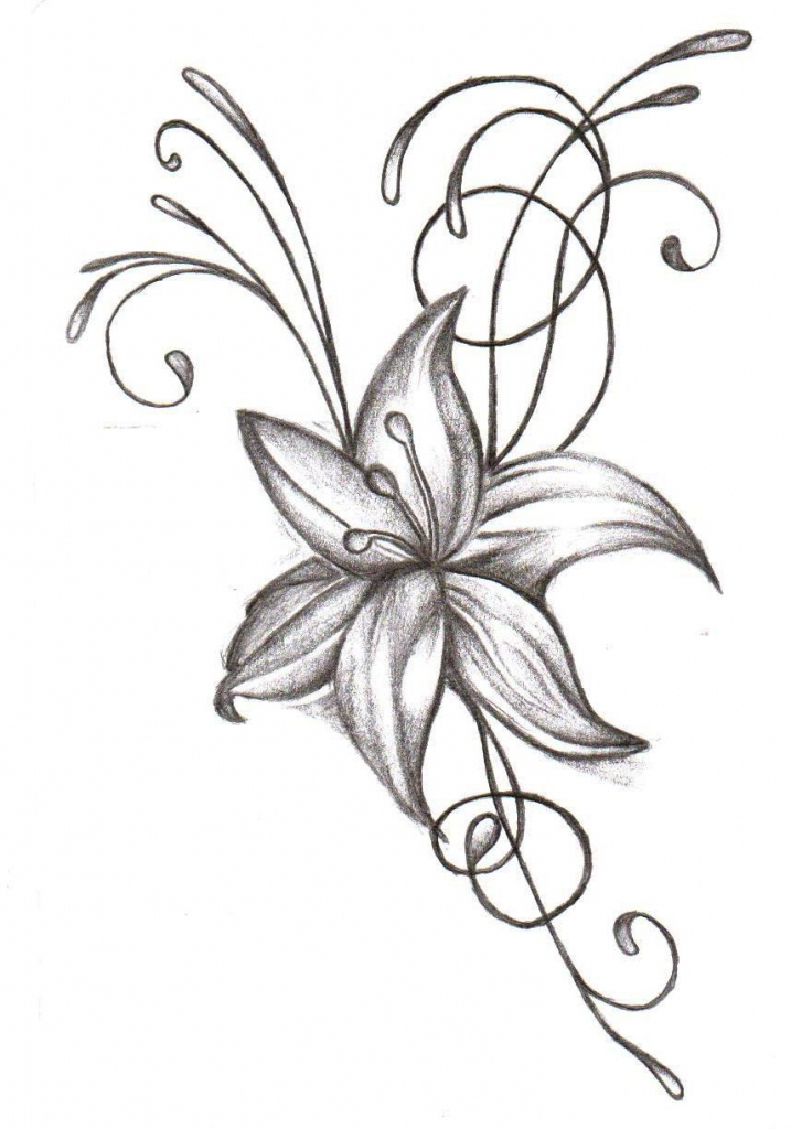 717x1024 Drawing Flower Design 1000 Images About Flower Drawings