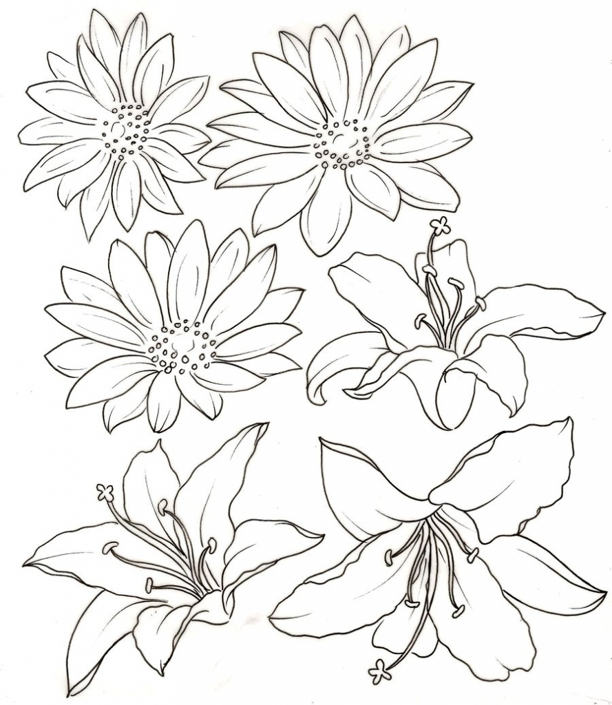 889x1024 Flower Drawings For Print Bobbie Print Floral Drawings Flowers