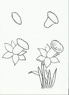 233x320 Daffodil Sketch Drawing Daffodils, Sketches