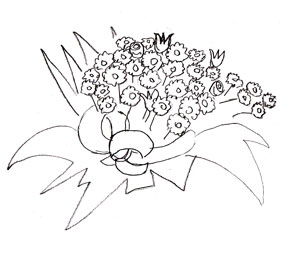 300x255 How To Draw A Flower