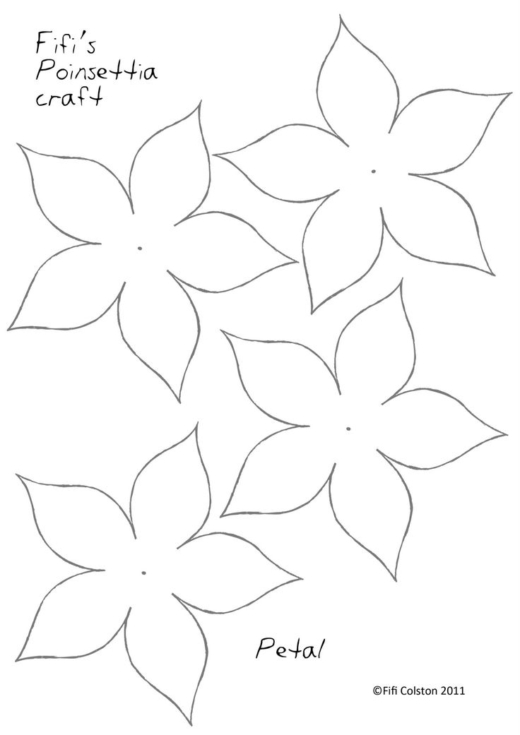 photograph regarding Printable Flowers Pattern called Flower Drawing Template at  Free of charge for