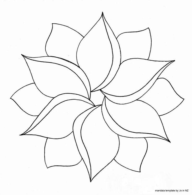 flowers having symmetry