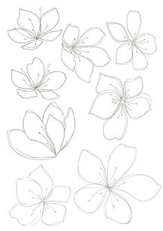 236x333 Set Of Flowers. Vector Illustration. Drawing Flowers, Drawings