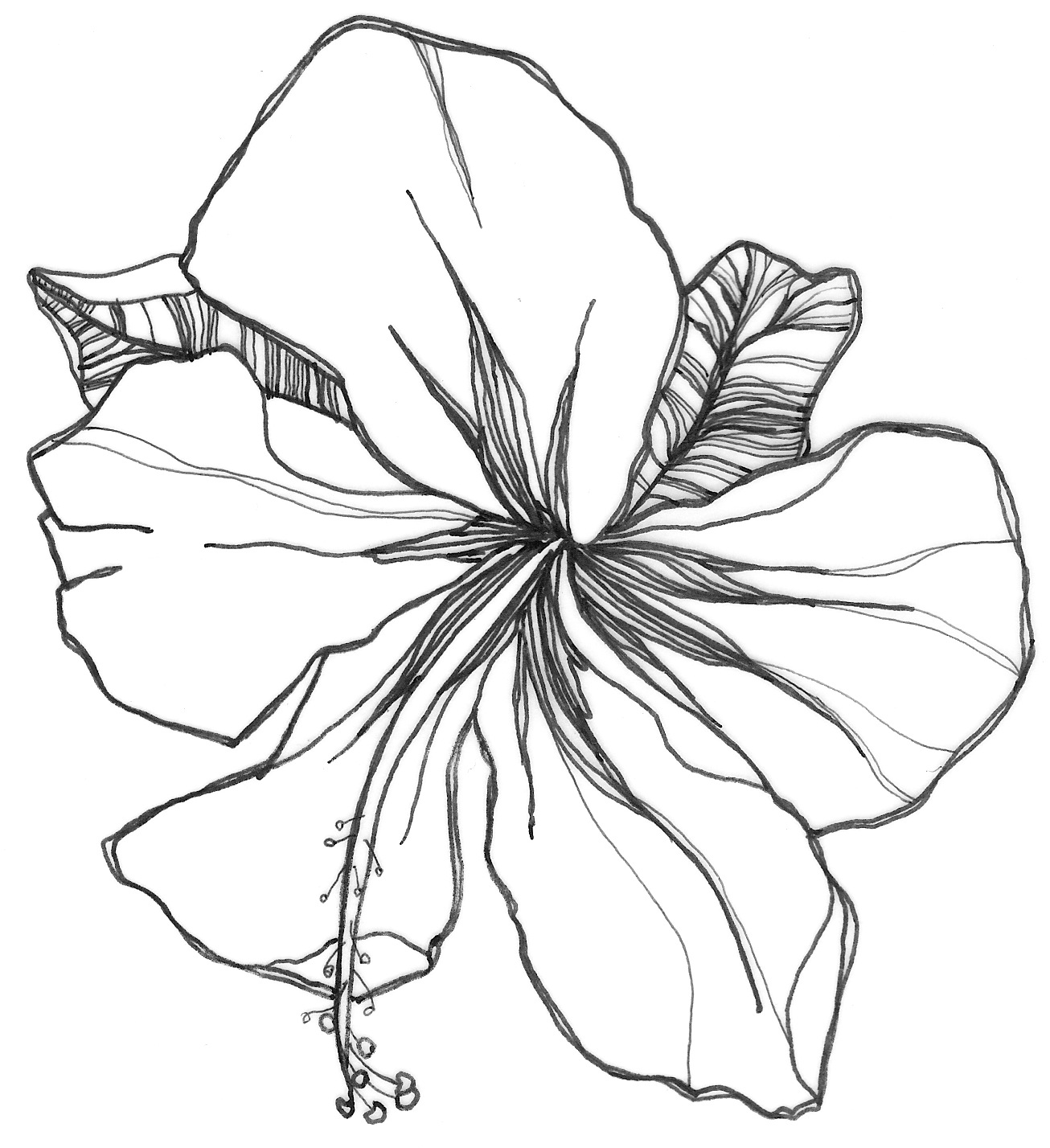 1306x1428 Flower Drawing