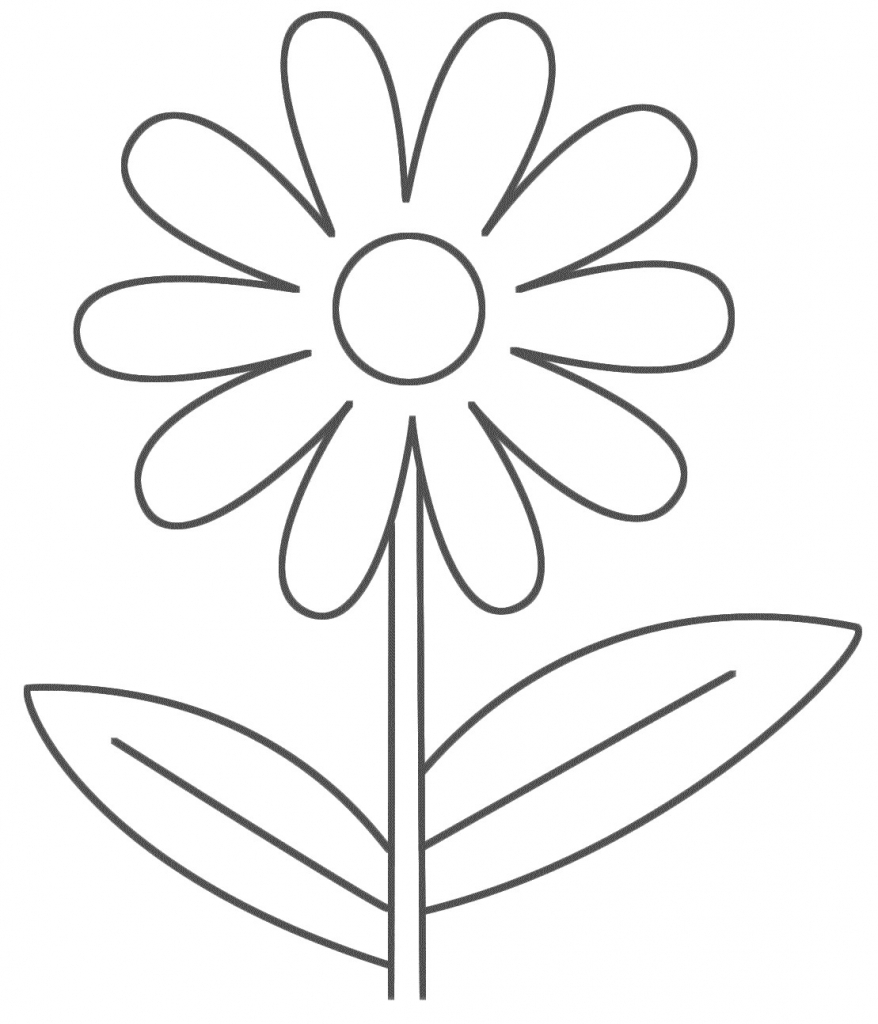 878x1024 Flower Drawing Simple