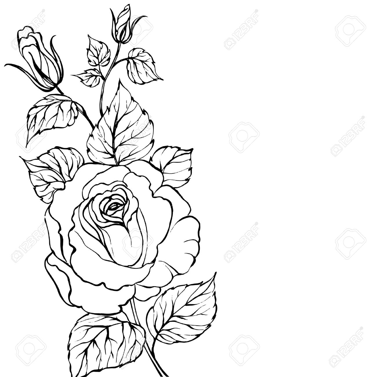 1300x1300 Rose Flower Outline Drawing Rose Tattoos Outline