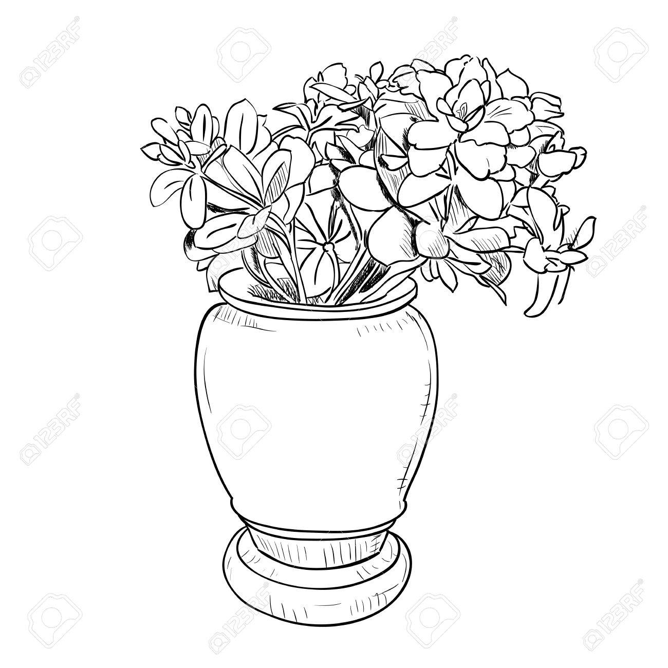 1300x1300 Vector Drawing Sketch Of Vase With Flowers. Hand Draw Illustration