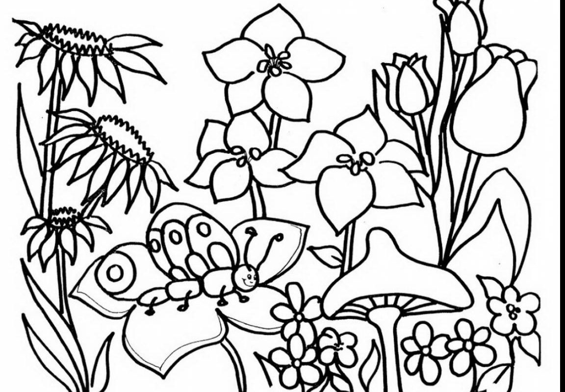 Flower Garden Drawing at GetDrawings.com | Free for personal use ...