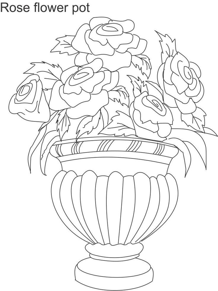 736x980 Pots With Flowers Drawing