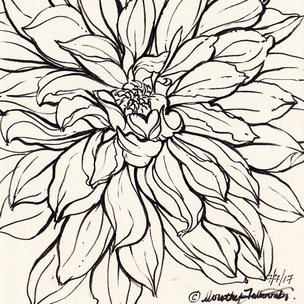 Flower Ink Drawing