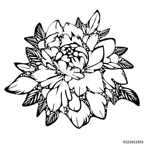 Flower Leaves Drawing