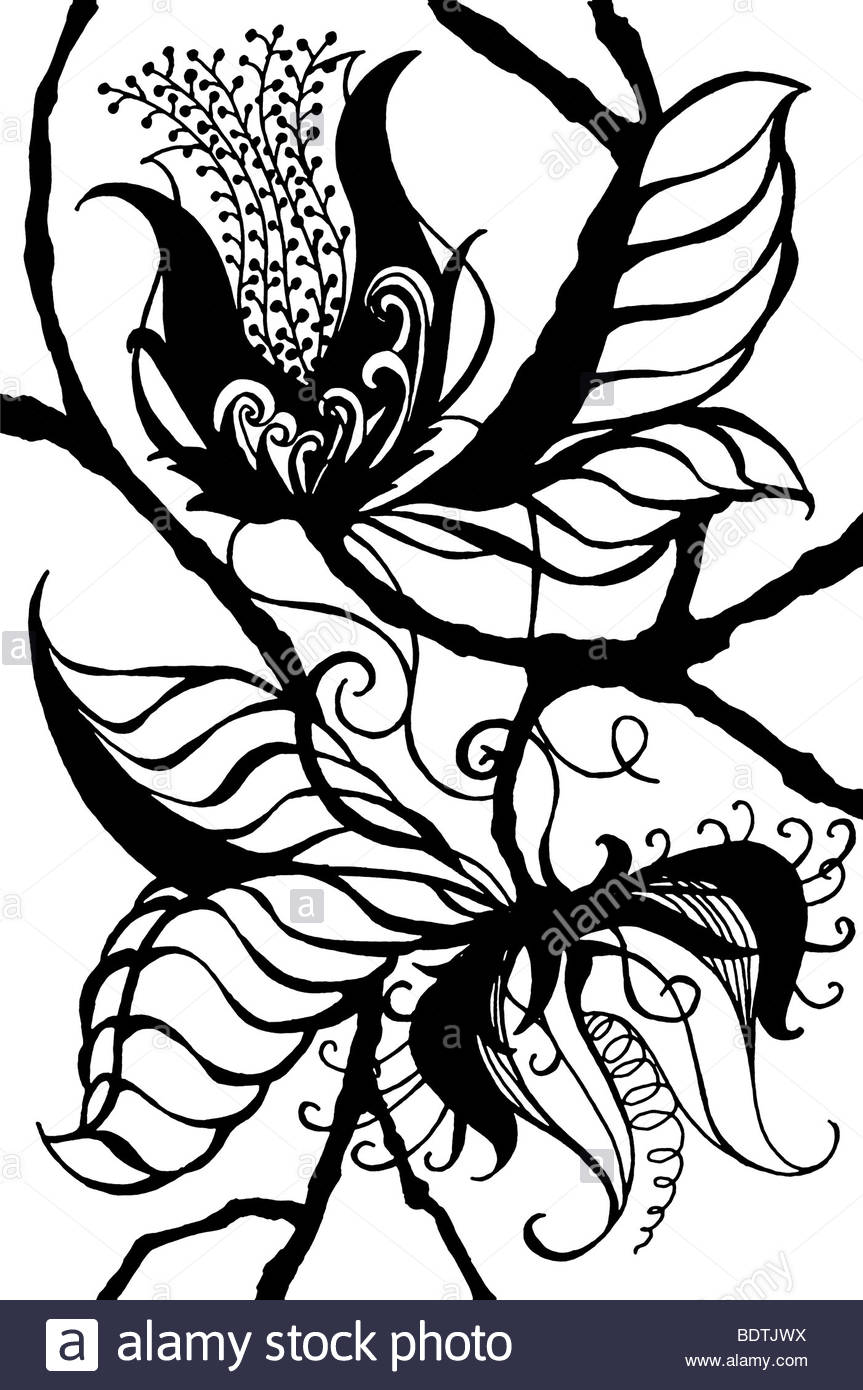 863x1390 Original Black On White Drawing Of Exotic Fantasy Botanical