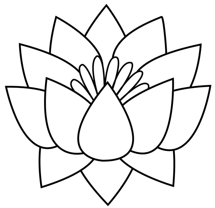 Flower Line Drawing Clip Art Free At Getdrawings Com