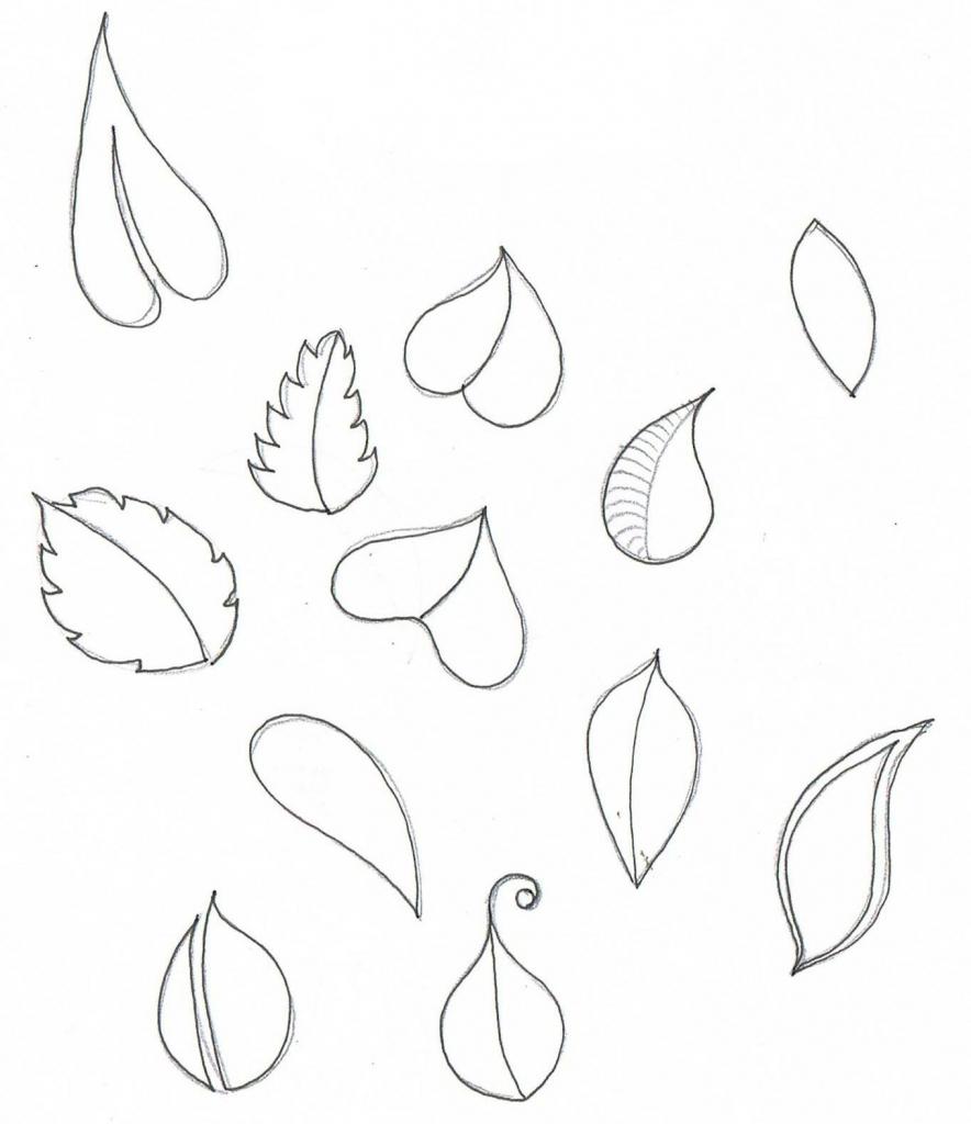 884x1024 Flower Petals Drawing Flower Petal Drawing Drawing Artisan
