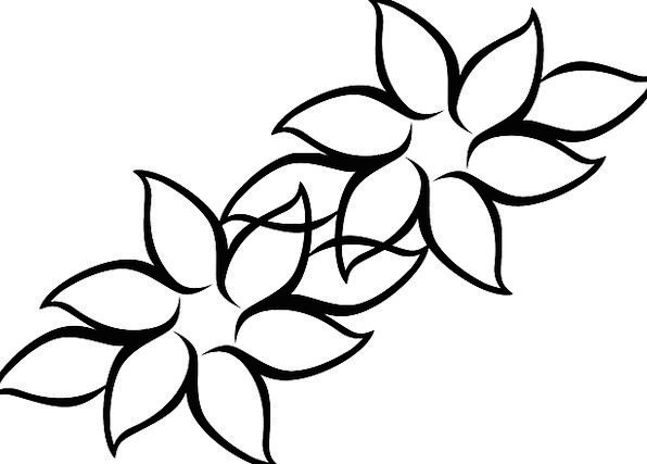 596x427 Flowers, Plants, Landscapes, Nature, Drawing, Sketch, Blossoms