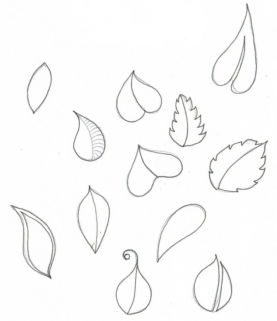 884x1024 Flowers Petals Drawing