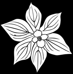 294x298 Wild Flower With Petals Clip Art