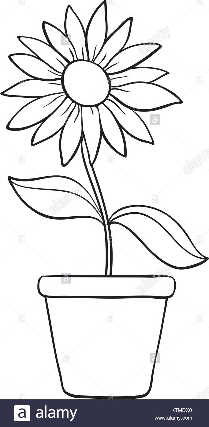 Line Drawing Flower Pot : Flower pot line drawing at getdrawings free for