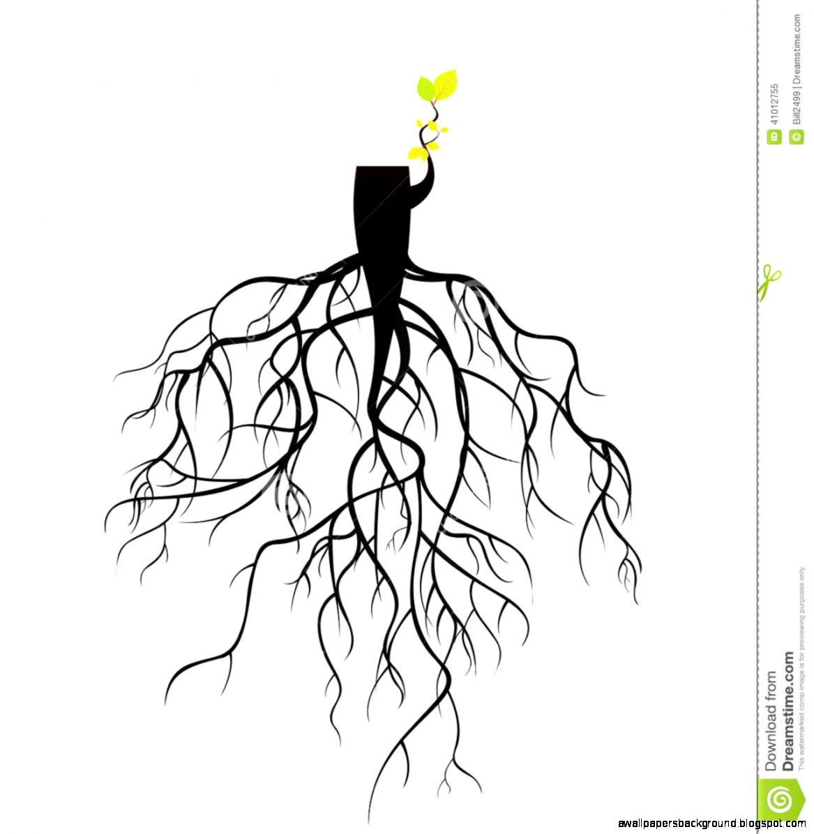 1167x1196 Plant With Roots Drawing Wallpapers Background