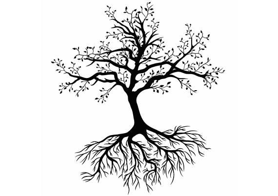 570x402 Tree