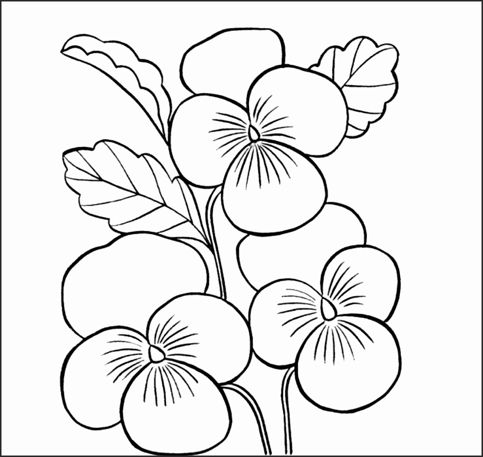 Flower Simple Drawing