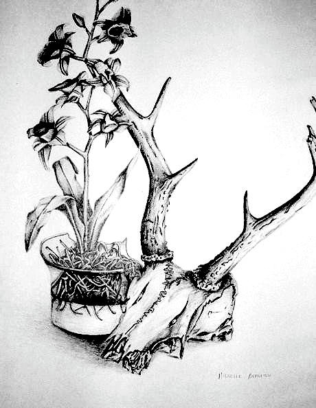 460x594 Skull And Flowers Drawing By Michelle Beaulieu