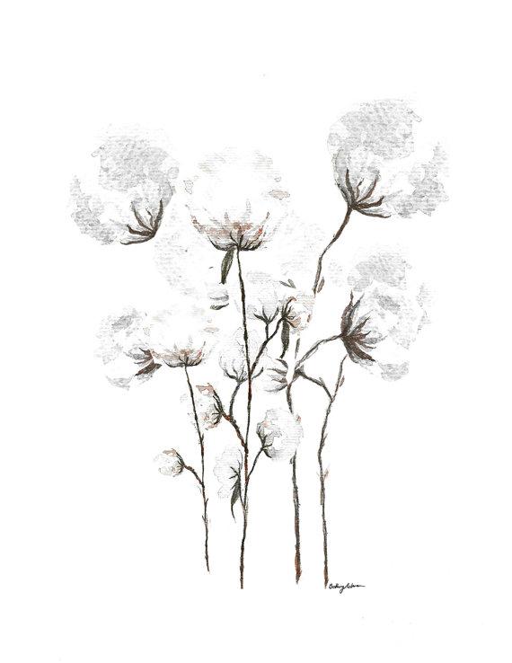570x738 Giclee Print Organic Cotton Flower Stem Boquet Cotton Stem