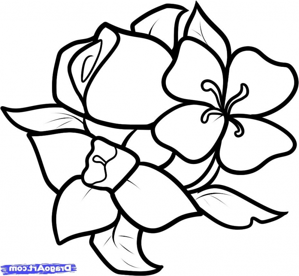 Flower Step By Step For Beginners Drawing at GetDrawings ...