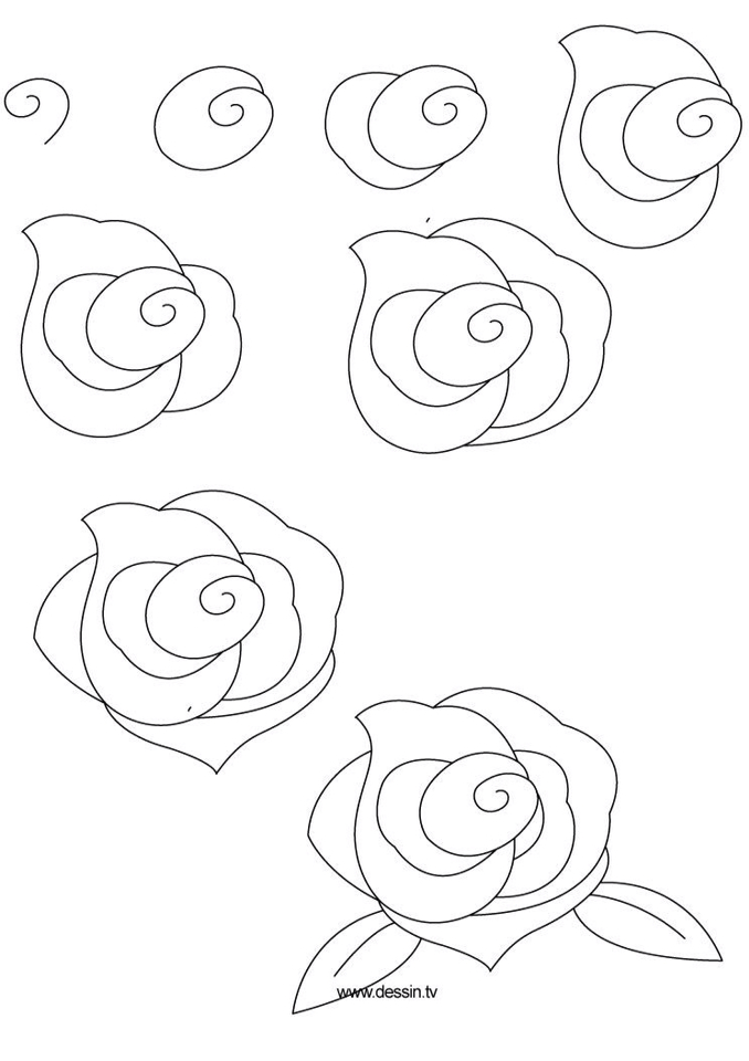 678x960 Pin By Lee Ann On Tangle Plants Rose, Drawings