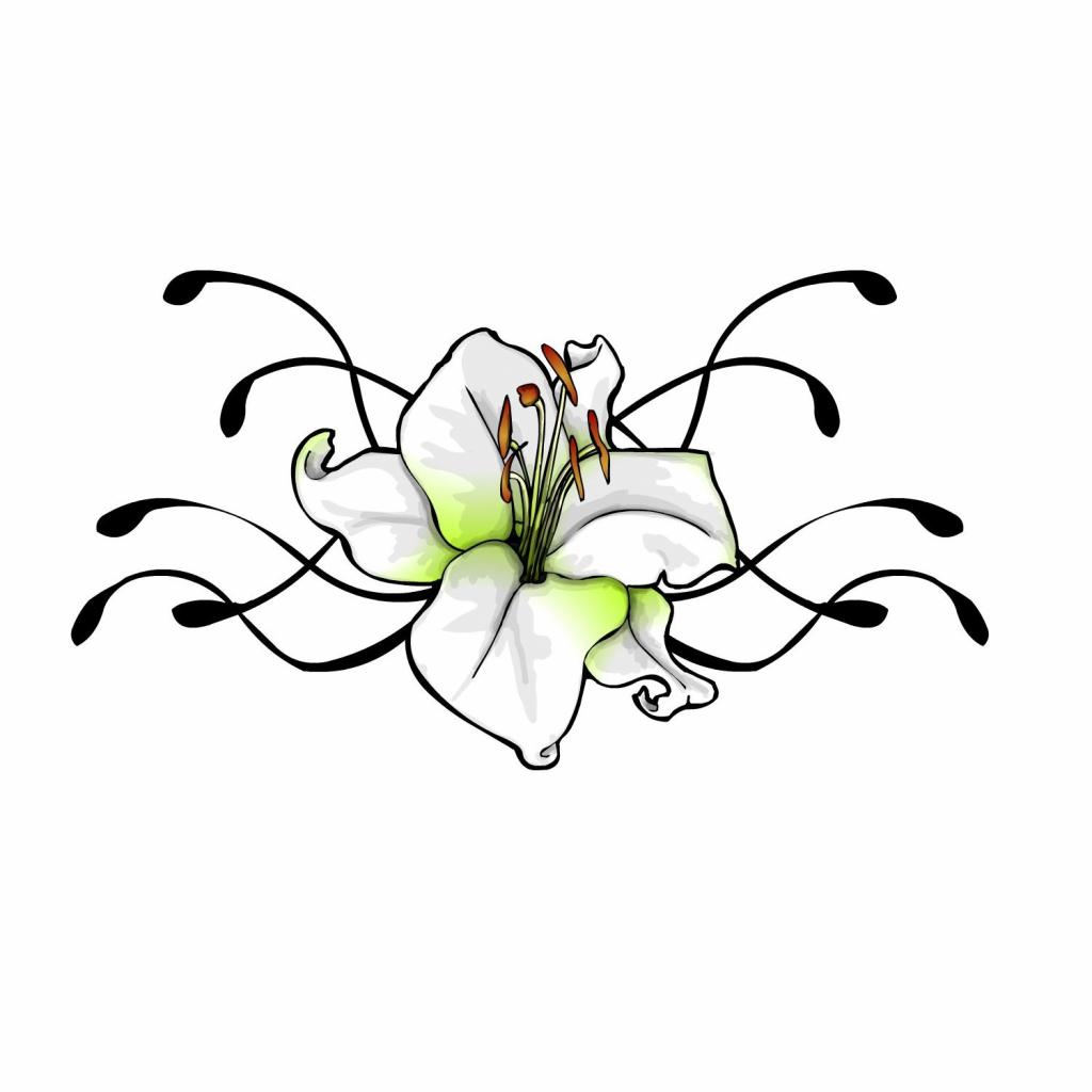 1024x1024 Flower Vine Drawing Tulip Flower Tattoo Designs Drawings