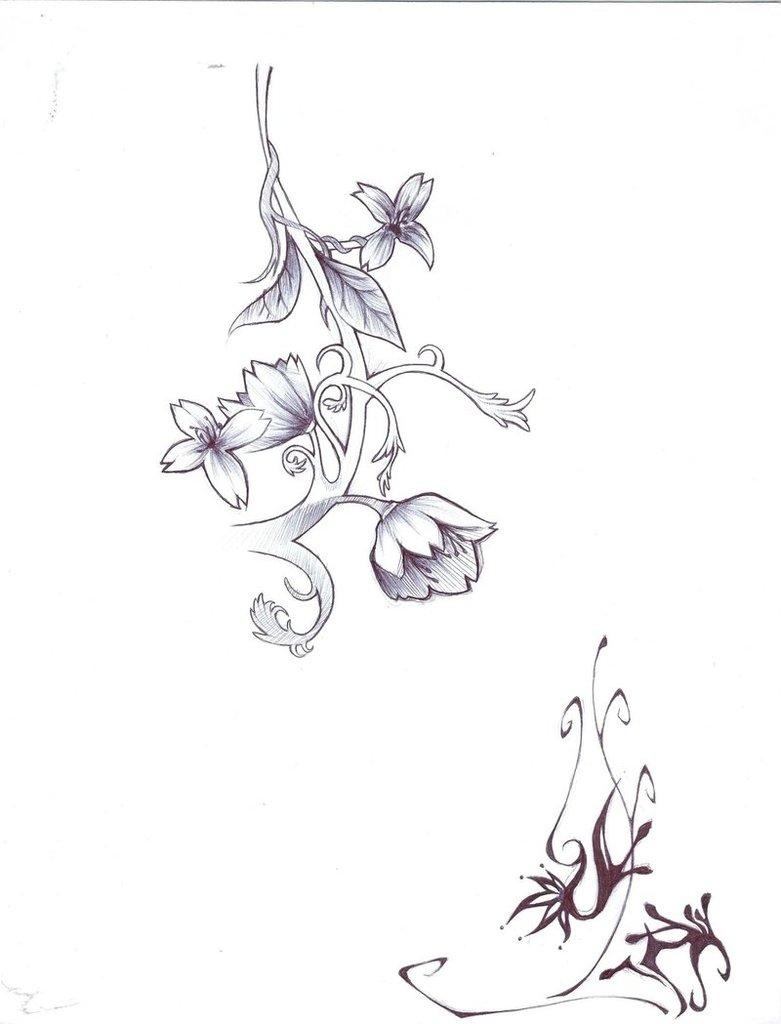 781x1024 Flower Vine Drawings