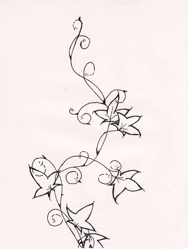 Flower Vines Drawing At Getdrawingscom Free For Personal Use