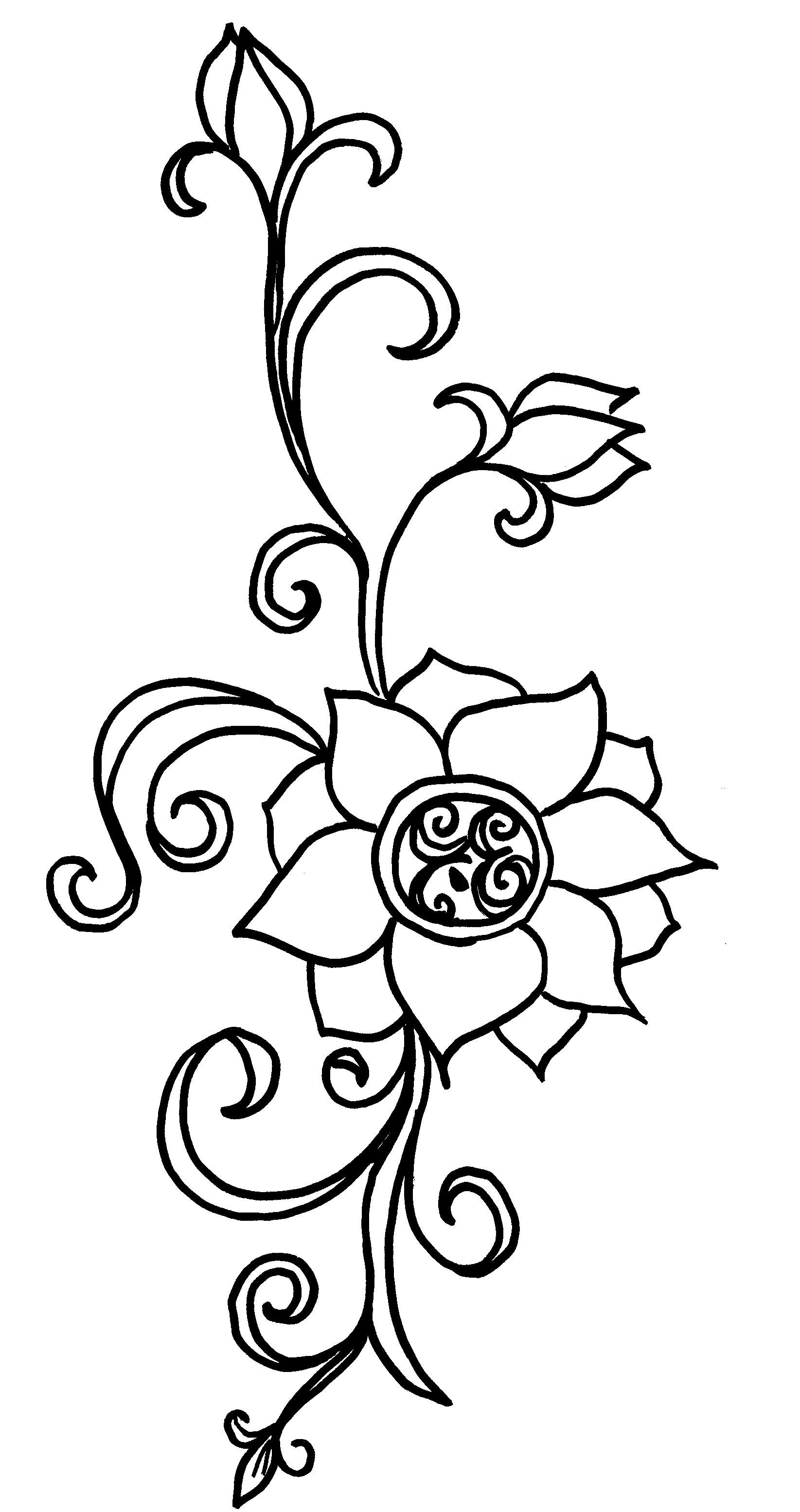 1645x3110 Vine Drawing Ideas