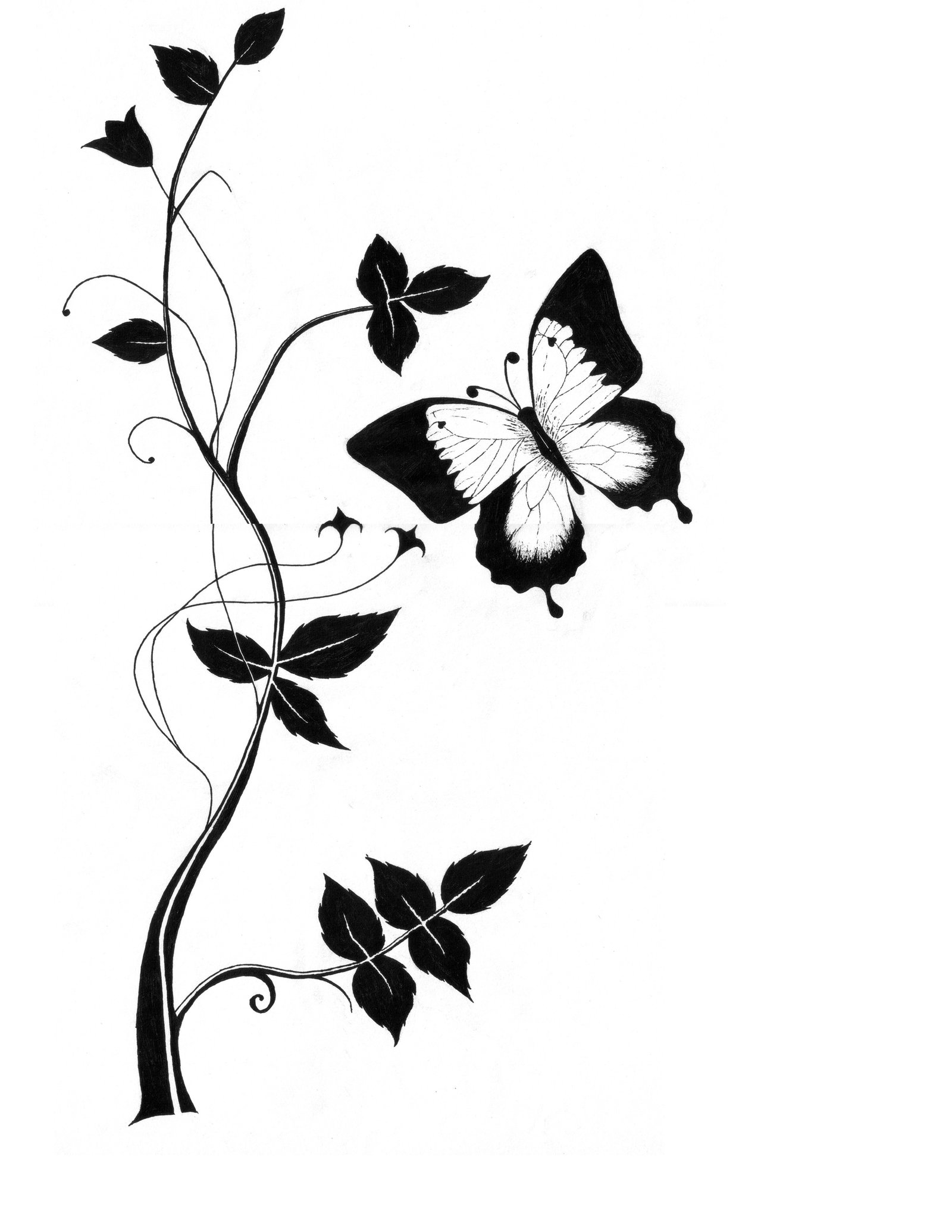 Flower Wallpaper Drawing At Getdrawingscom Free For