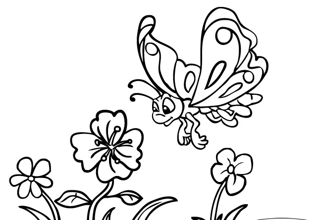 Flower With Butterfly Drawing