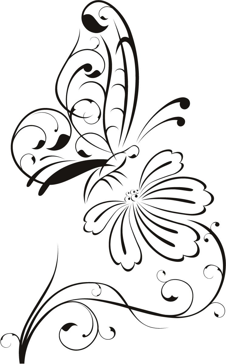 744x1200 Butterfly On Flower Outline Floral Wall Decal Wall Stickers