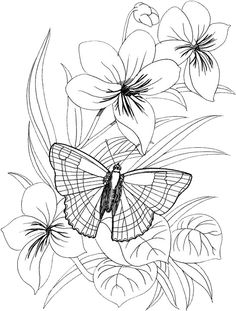 236x311 Riscos Para Pintura Em Tecido Flores