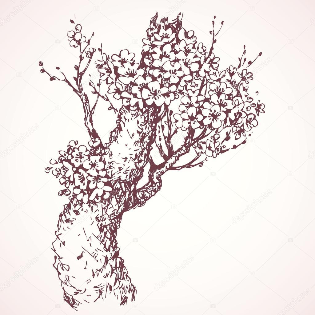 1024x1024 Spring Flowering Tree. Vector Drawing Stock Vector Marinka