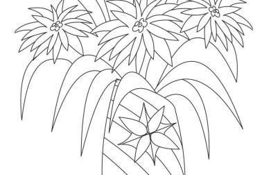 Flowerpot Drawing